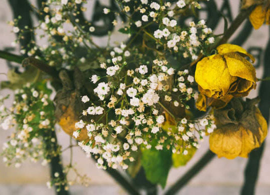Your Essential Guide to Funeral Etiquette