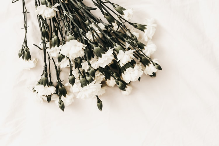 A bouquet of white flowers